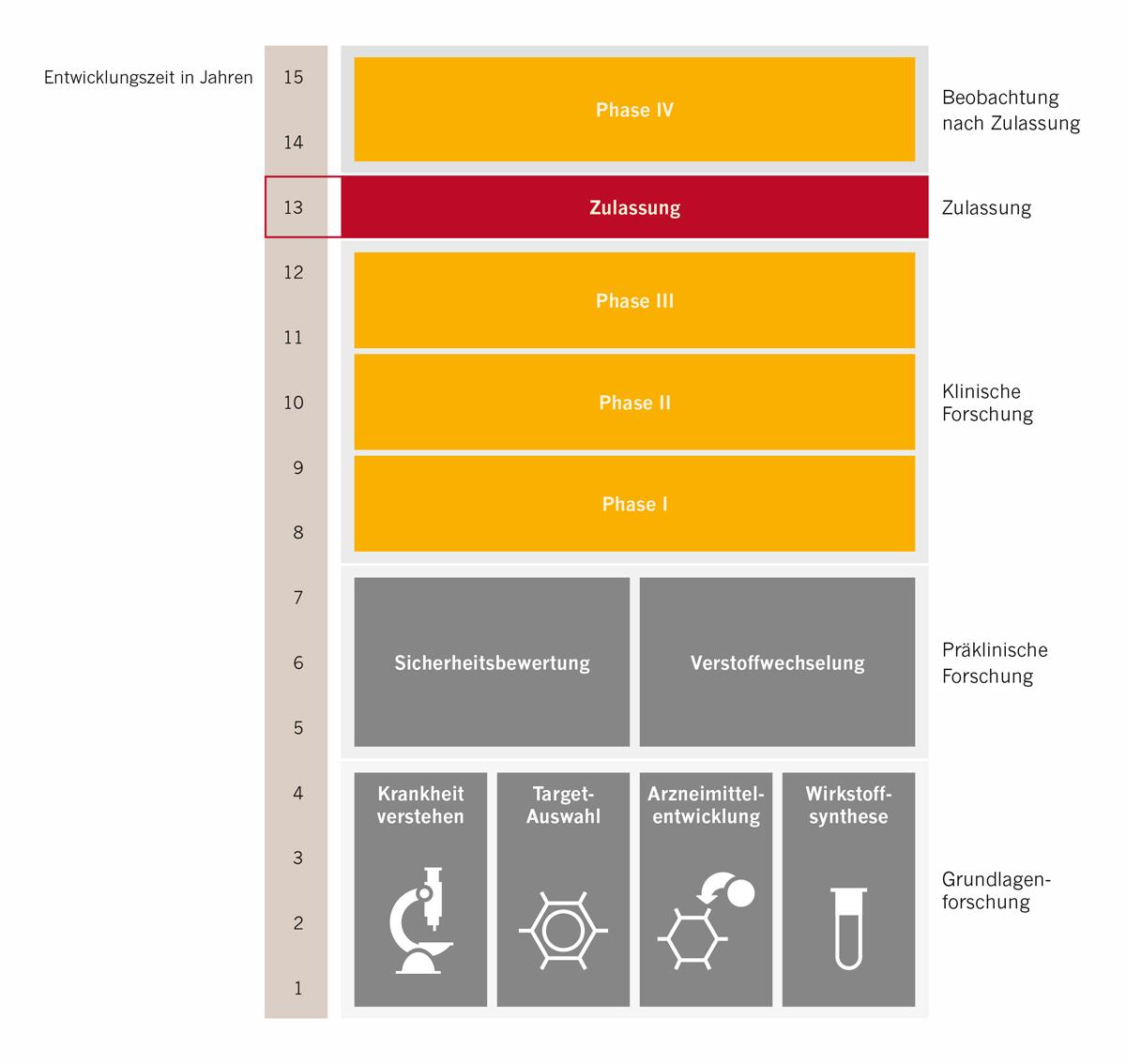 Grafik Phasen in der Entwicklung eines Medikaments - Klinische Forschung Novartis