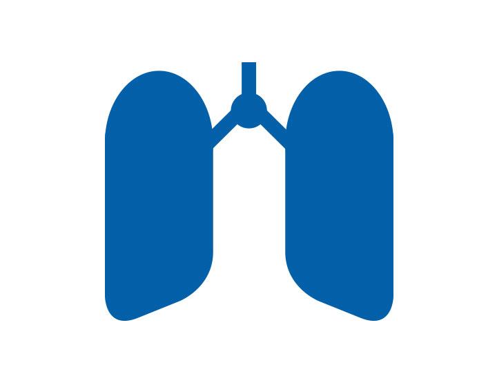 Atemwege, Lungenkrebs, Asthma COPD Lungenfibrose Lunge Icon