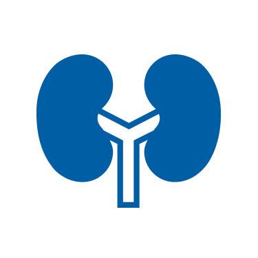Diabetische Nierenerkrankung (Nephropathie)