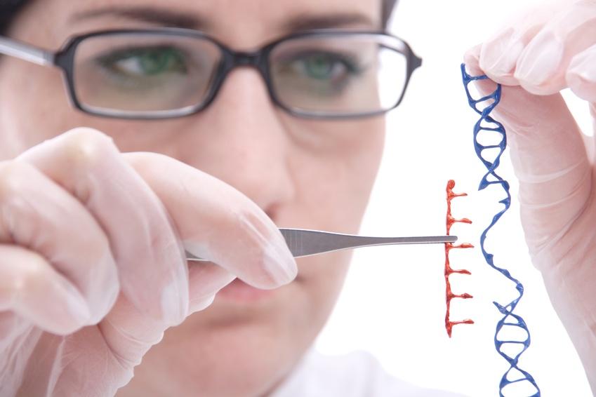 CTL019-Forschung zu verschiedenen Krebsarten